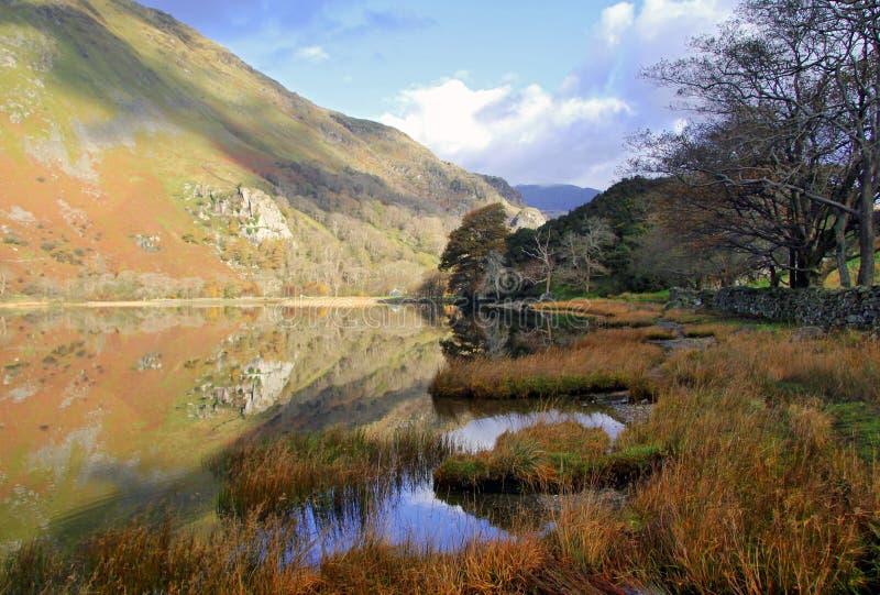 Όμορφα ουαλλέζικα βουνά που απεικονίζονται ακόμα τα νερά της λίμνης Llyn Gwynant στοκ εικόνες