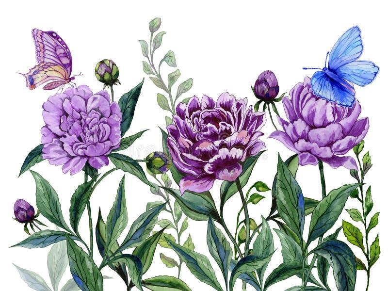 Όμορφα πορφυρά peony λουλούδια μίσχοι με τα πράσινα φύλλα και τις φωτεινές πεταλούδες που κάθονται σε τους η ανασκόπηση απομόνωσε διανυσματική απεικόνιση