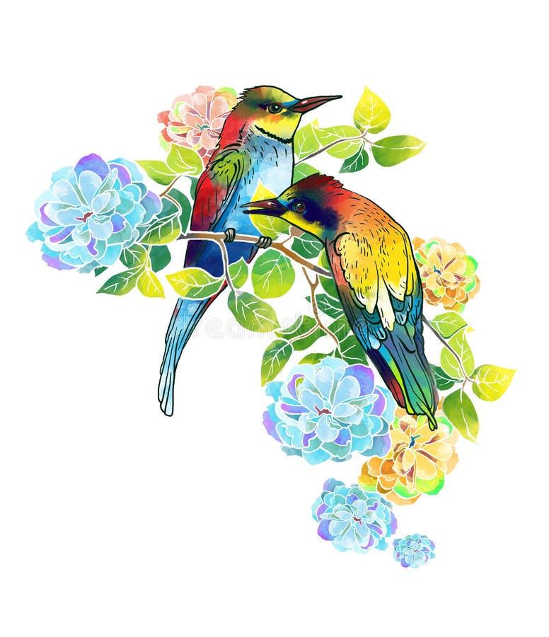 Όμορφα πουλιά Watercolor και λεπτά λουλούδια ελεύθερη απεικόνιση δικαιώματος