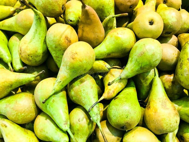 Όμορφα πράσινα ώριμα νότια φυσικά γλυκά νόστιμα ασιατικά φωτεινά αχλάδια βιταμινών, φρούτα Σύσταση, ανασκόπηση στοκ εικόνα με δικαίωμα ελεύθερης χρήσης