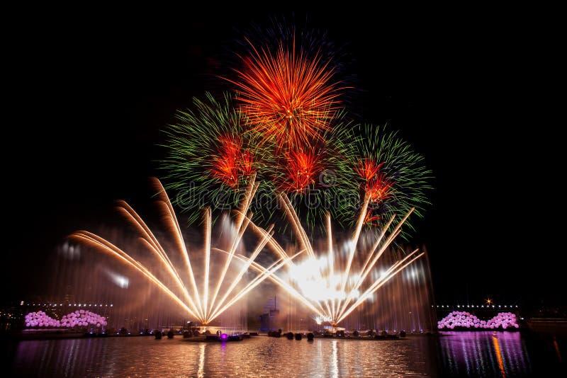 Όμορφα πυροτεχνήματα στο νυχτερινό ουρανό στοκ εικόνες με δικαίωμα ελεύθερης χρήσης