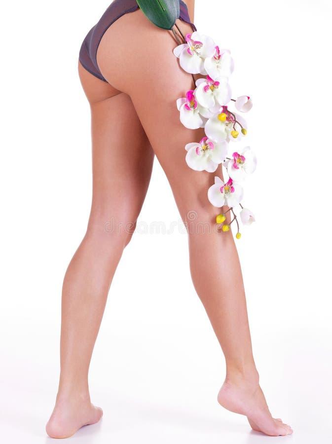Όμορφα πόδια της γυναίκας μετά από τη SPA στοκ εικόνα με δικαίωμα ελεύθερης χρήσης