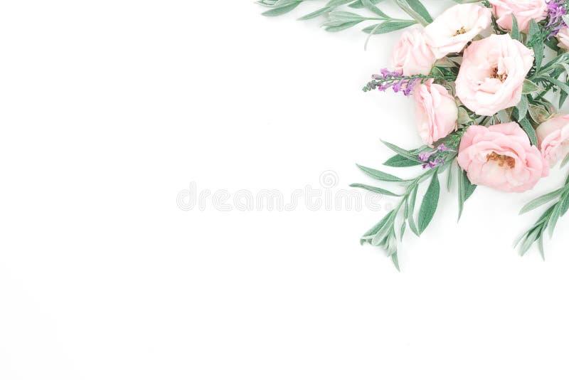 Όμορφα ρόδινα κεφάλια τριαντάφυλλων στο ρόδινο υπόβαθρο στοκ φωτογραφίες με δικαίωμα ελεύθερης χρήσης