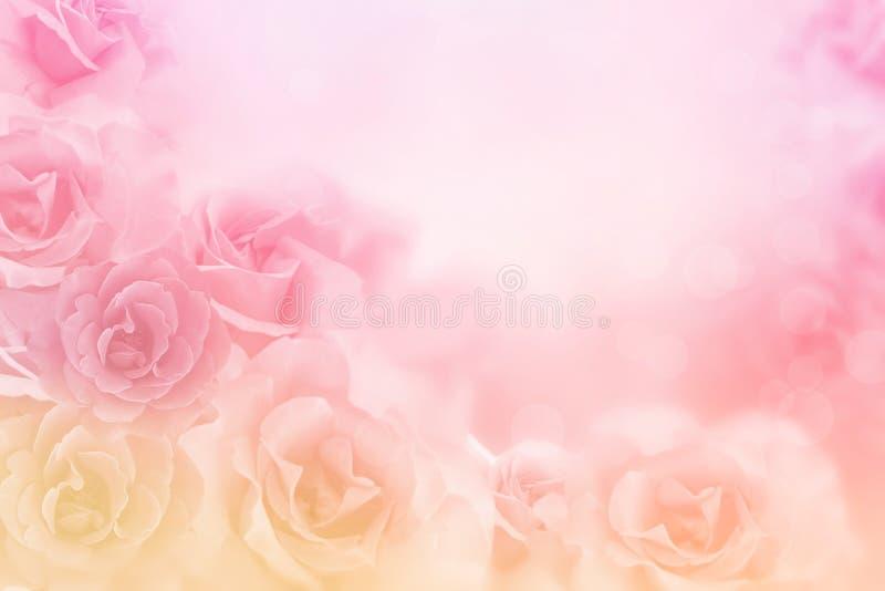 Όμορφα ρόδινα σύνορα λουλουδιών τριαντάφυλλων στο μαλακό υπόβαθρο για το βαλεντίνο στοκ φωτογραφία με δικαίωμα ελεύθερης χρήσης