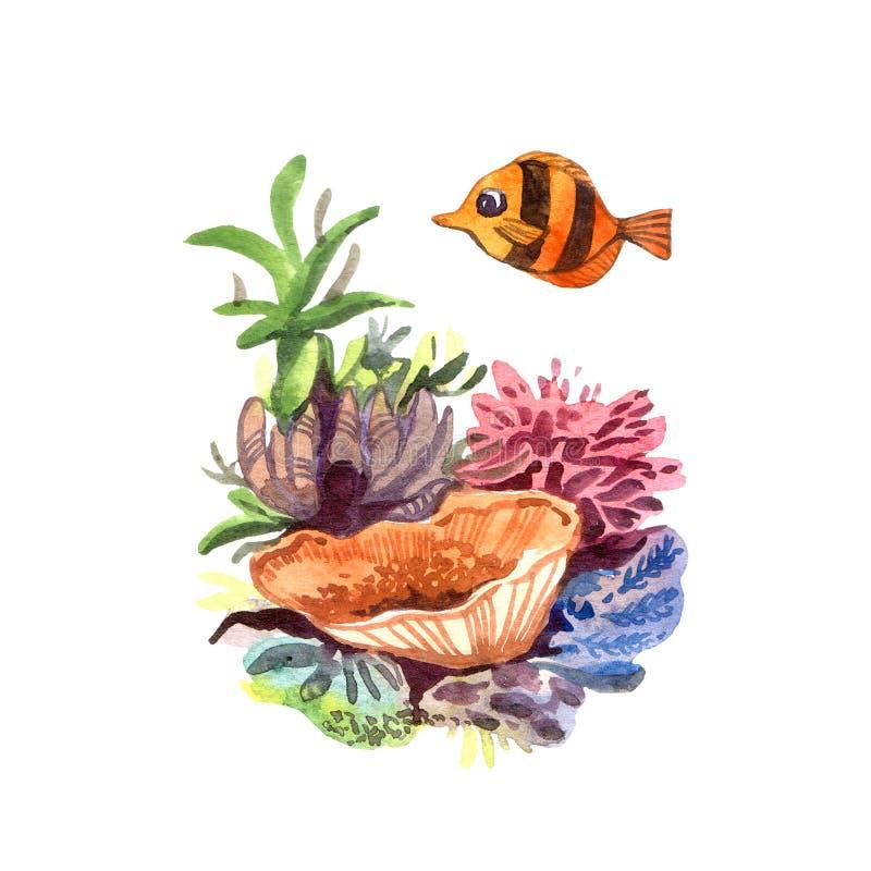 Όμορφα συρμένα χέρι φύκι και ψάρια απεικόνισης απεικόνιση αποθεμάτων