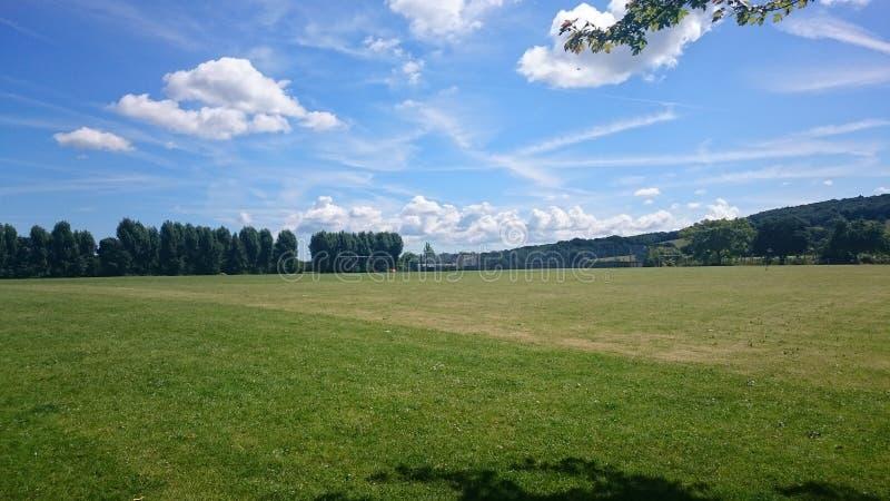 Όμορφα σύννεφα και treeline στοκ εικόνες με δικαίωμα ελεύθερης χρήσης
