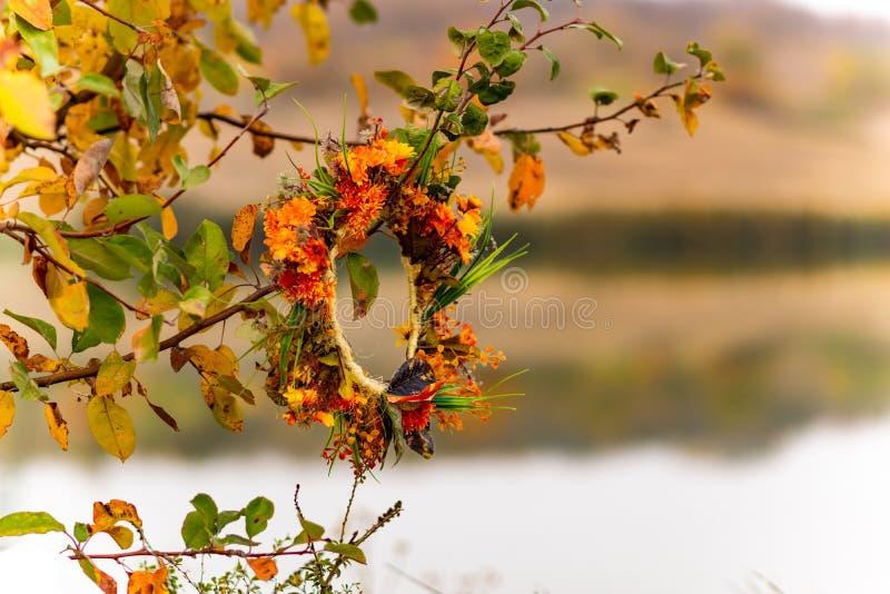 Όμορφα τοπία της Ρωσίας Περιοχή Rostov Ζωηρόχρωμες θέσεις Πράσινοι βλάστηση και ποταμοί με τις λίμνες και τα έλη Δάση και mea στοκ εικόνες