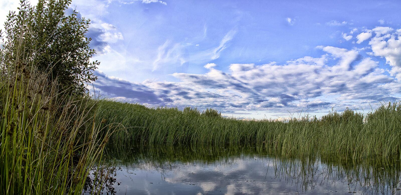 Όμορφα τοπία της φύσης της Λευκορωσίας στοκ εικόνες
