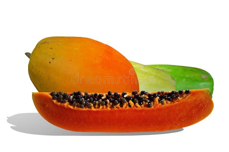 Όμορφα φρέσκα ώριμα papayas στο άσπρο υπόβαθρο στοκ εικόνες