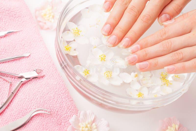 Όμορφα χέρια γυναικών ` s με το μανικιούρ στο κύπελλο του νερού στοκ εικόνα