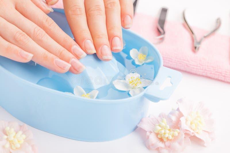 Όμορφα χέρια γυναικών ` s με το μανικιούρ στο κύπελλο του νερού στοκ εικόνες με δικαίωμα ελεύθερης χρήσης
