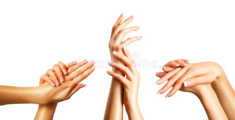Όμορφα χέρια καθορισμένα στοκ φωτογραφία με δικαίωμα ελεύθερης χρήσης