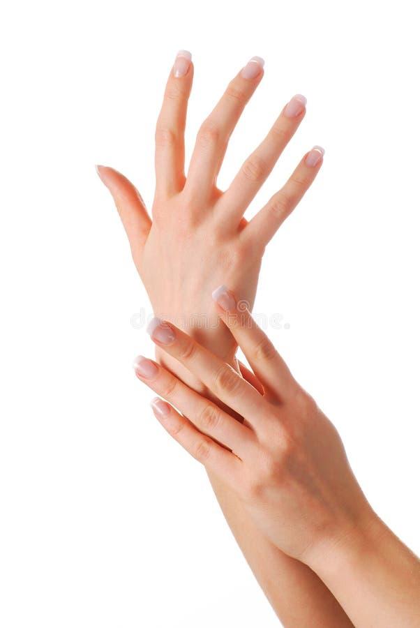 όμορφα χέρια στοκ φωτογραφία