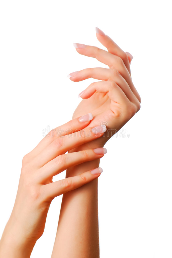 όμορφα χέρια στοκ εικόνα