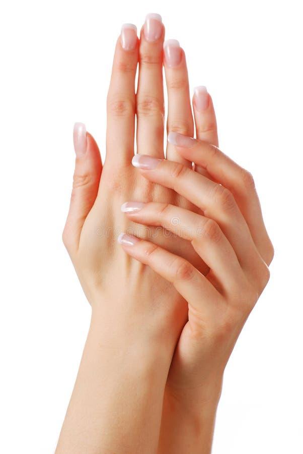 όμορφα χέρια στοκ εικόνες