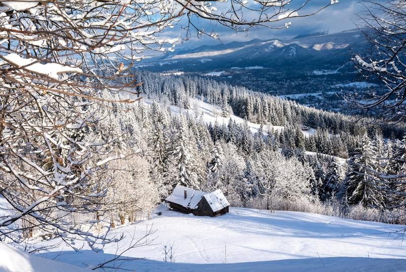 Όμορφα χειμερινά τοπία με αφράτο χιόνι στο βουνό στοκ φωτογραφία με δικαίωμα ελεύθερης χρήσης