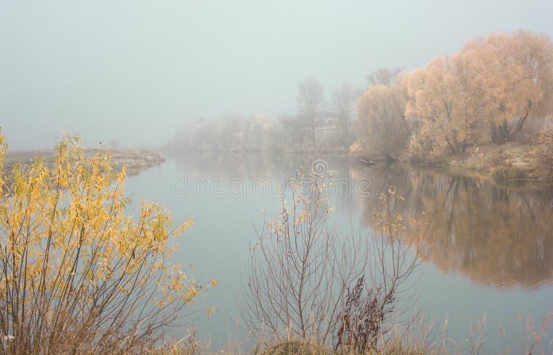 Όμορφα χρωματισμένα δέντρα πρωινού με τη λίμνη το φθινόπωρο, φωτογραφία τοπίων Πρόσφατο φθινόπωρο και πρώιμη χειμερινή περίοδος Υ στοκ εικόνα με δικαίωμα ελεύθερης χρήσης