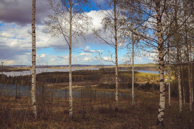 Όμορφες απόψεις των βουνών στις λίμνες, τα σπίτια, τις σημύδες και το δασικό φινλανδικό τοπίο Λίμνες και κοιλάδα Καρελία στοκ εικόνα με δικαίωμα ελεύθερης χρήσης