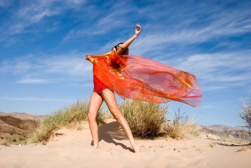 όμορφες ασκώντας θηλυκέ&sig στοκ φωτογραφία με δικαίωμα ελεύθερης χρήσης