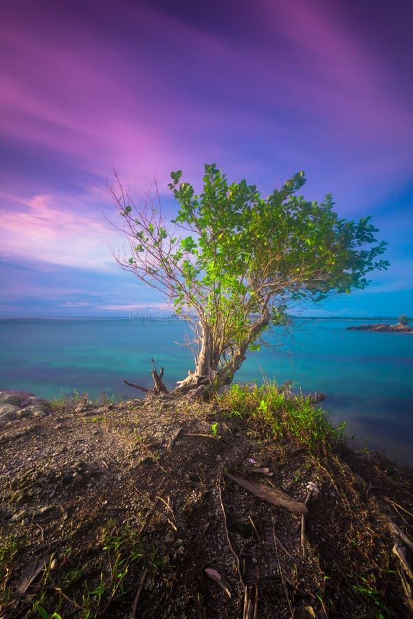 Όμορφες ηλιοβασίλεμα και ανατολή από το νησί mentawai στοκ εικόνες
