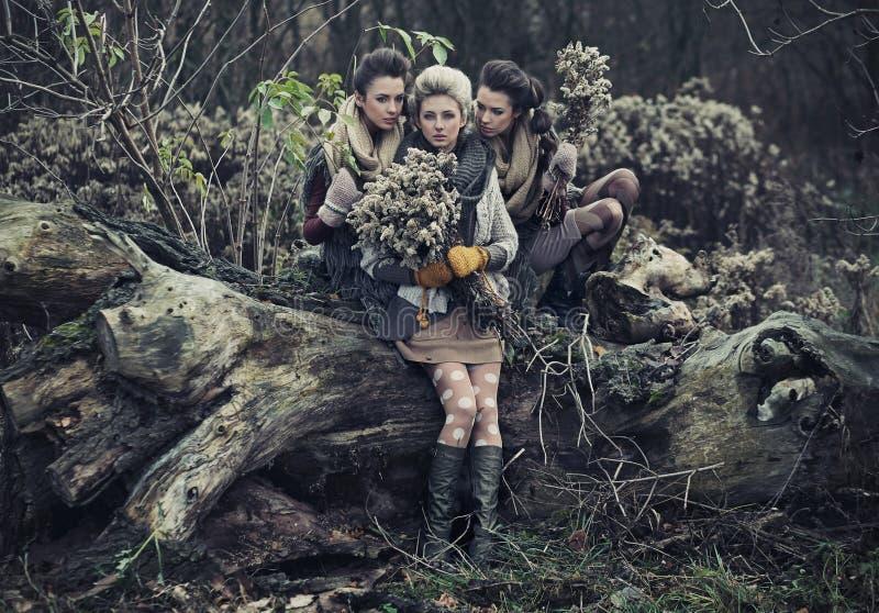 όμορφες κυρίες τρία στοκ εικόνες με δικαίωμα ελεύθερης χρήσης