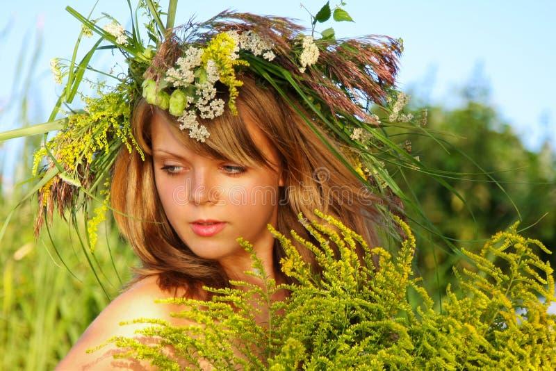 όμορφες νεολαίες ηλιοβασιλέματος πορτρέτου χλόης κοριτσιών στοκ εικόνες
