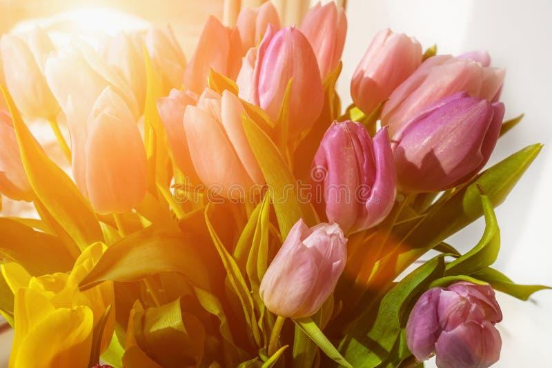 Όμορφες ρόδινες τουλίπες σε μια μεγάλη ανθοδέσμη Συγχαρητήρια r στοκ εικόνα