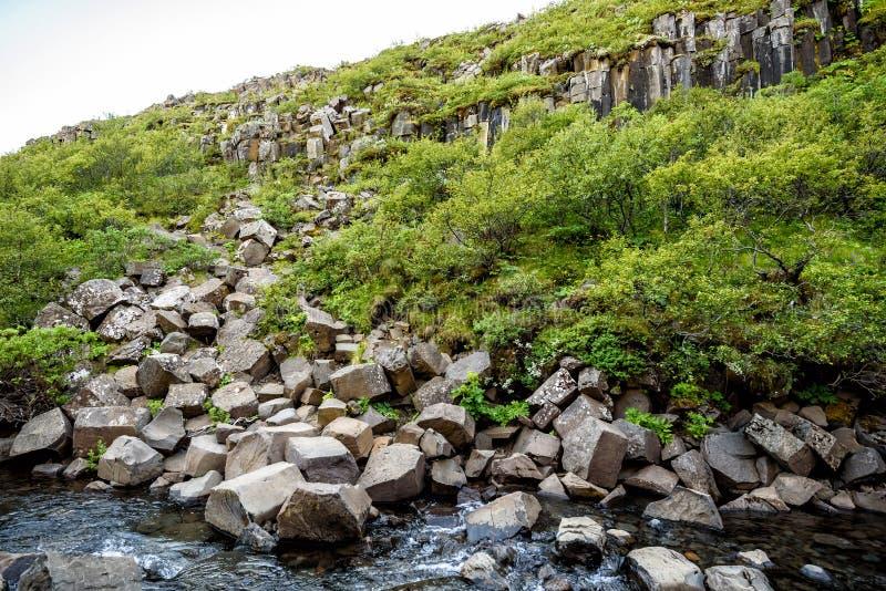 Όμορφες στήλες πετρών βασαλτών στο εθνικό πάρκο Skaftafell, Icel στοκ φωτογραφία με δικαίωμα ελεύθερης χρήσης