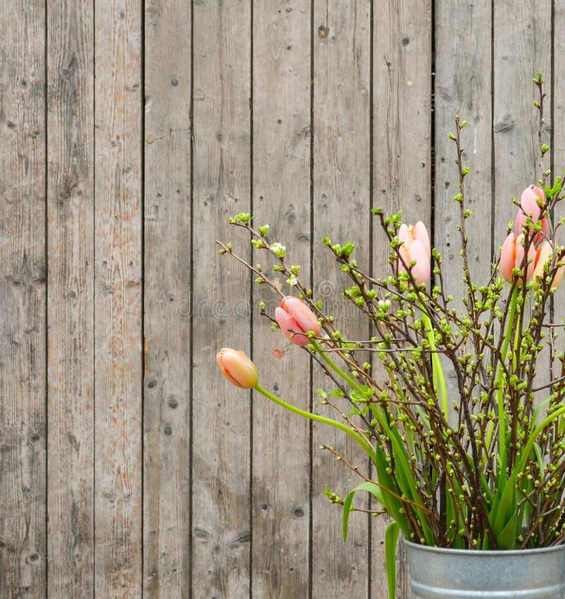 Όμορφες τουλίπες άνοιξη στο βάζο στο ξύλινο κλίμα στοκ εικόνα