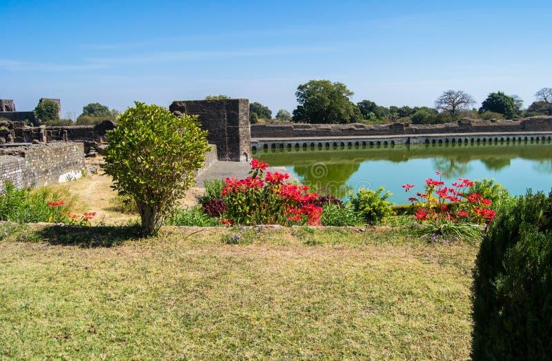 Όμορφες pulcherrima ευφορβίας Poinsettia και λίμνη νερού στοκ εικόνα με δικαίωμα ελεύθερης χρήσης