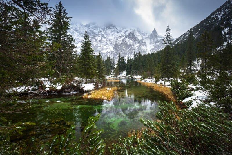 Όμορφη άποψη βουνών Tatra στον κολπίσκο ψαριών στοκ φωτογραφία
