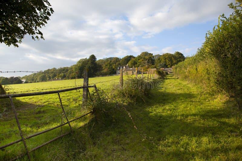 Όμορφη άποψη καλλιεργήσιμου εδάφους Somerset στοκ εικόνες
