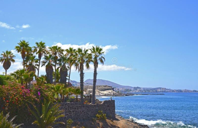 Όμορφη άποψη με τους τροπικούς φοίνικες και τα λουλούδια κοντά στην ωκεάνια παραλία στη πλευρά Adeje, Tenerife, Κανάρια νησιά, Ισ στοκ εικόνα