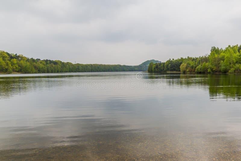 Όμορφη άποψη μιας λίμνης με πολλά δέντρα και έναν γκρίζο ουρανό και της αντανάκλασης στο νερό στοκ εικόνες