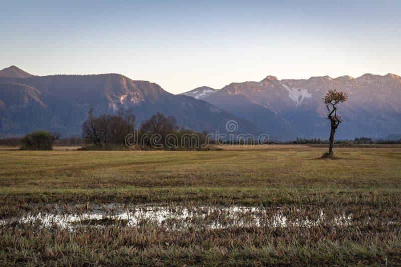 Όμορφη άποψη στα μουγκρητά Murnauer στη Βαυαρία στοκ φωτογραφία με δικαίωμα ελεύθερης χρήσης
