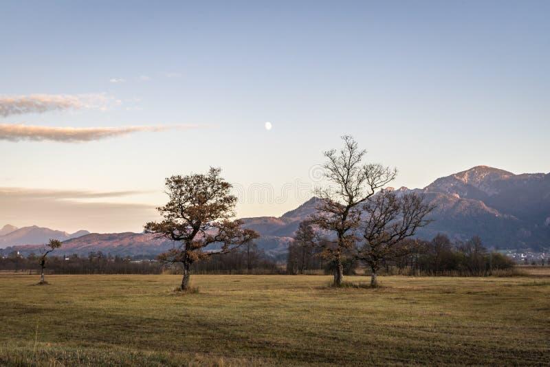 Όμορφη άποψη στα μουγκρητά Murnauer στη Βαυαρία στοκ εικόνα