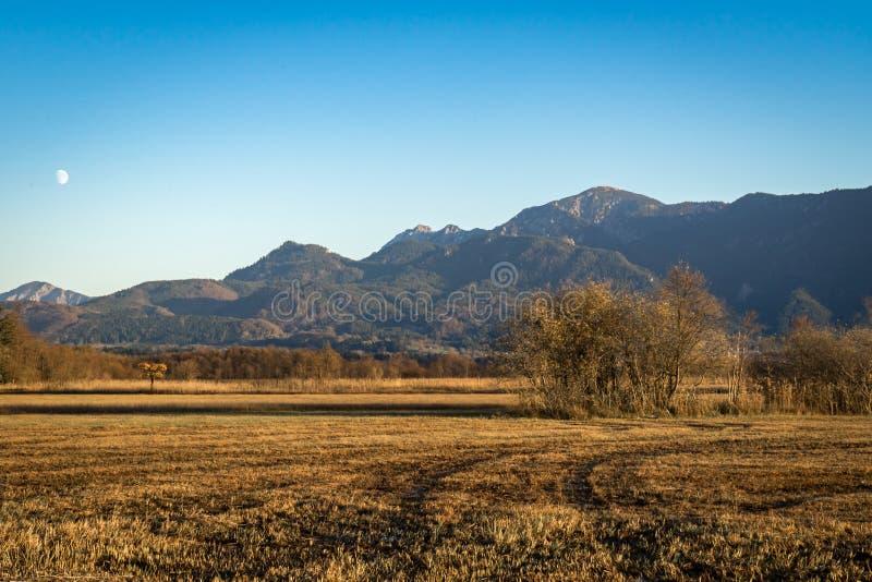 Όμορφη άποψη στα μουγκρητά Murnauer στη Βαυαρία στοκ φωτογραφία