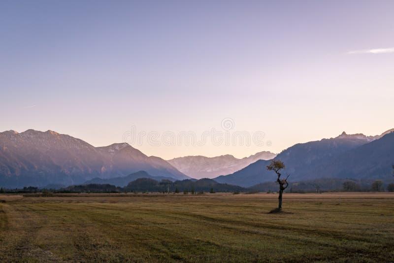 Όμορφη άποψη στα μουγκρητά Murnauer στη Βαυαρία στοκ εικόνα με δικαίωμα ελεύθερης χρήσης