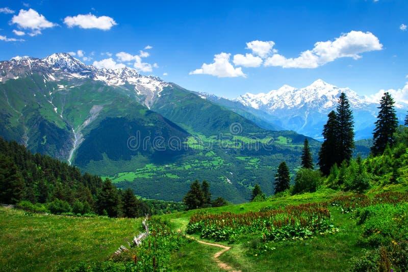 Όμορφη άποψη σχετικά με την πράσινη της Γεωργίας κοιλάδα βουνών σε Svaneti στοκ φωτογραφία με δικαίωμα ελεύθερης χρήσης