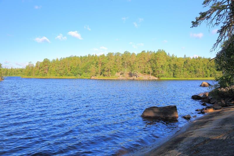 Όμορφη άποψη σχετικά με τη λίμνη τη θερινή ημέρα Σκούρο μπλε επιφάνεια νερού λιμνών, πράσινοι ψηλοί δέντρα και μπλε ουρανός με τα στοκ εικόνα
