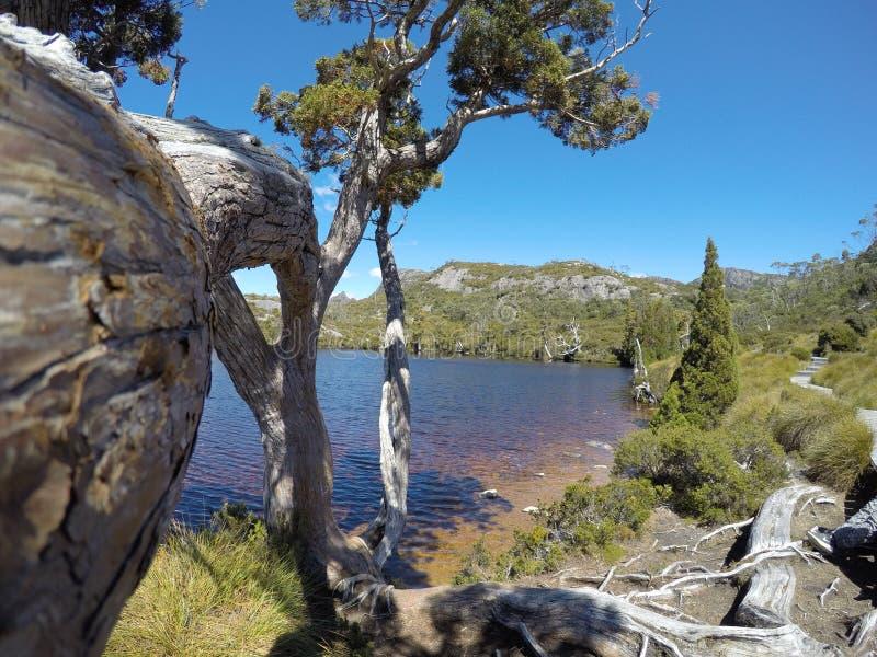 Όμορφη άποψη της λίμνης wombat στοκ εικόνα με δικαίωμα ελεύθερης χρήσης
