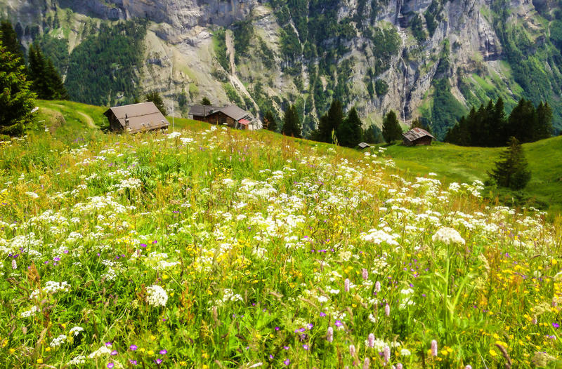 Όμορφη άποψη τοπίων του γοητευτικού ορεινού χωριού της Murren με την κοιλάδα Lauterbrunnen και τις ελβετικές Άλπεις, περιοχή Jung στοκ φωτογραφίες