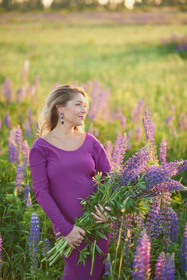 Όμορφη έγκυος γυναίκα στο ιώδες φόρεμα που κρατά ένα lupine στο ηλιοβασίλεμα στον τομέα Η έννοια της φύσης και του ειδυλλίου στοκ εικόνες
