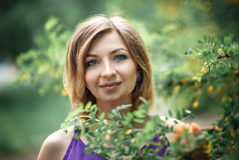 Όμορφη έγκυος Ευρωπαία γυναίκα στο πορφυρό ιώδες φόρεμα, που στέκεται κοντά στους θάμνους της ακακίας με τα κίτρινα μικρά λουλούδ στοκ φωτογραφία με δικαίωμα ελεύθερης χρήσης