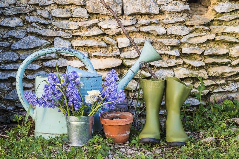 Όμορφη έννοια κηπουρικής: το παλαιό πότισμα μπορεί, λαστιχένιες μπότες, να ανθίσει το δοχείο, και τους μπλε υάκινθους μπροστά από στοκ εικόνα