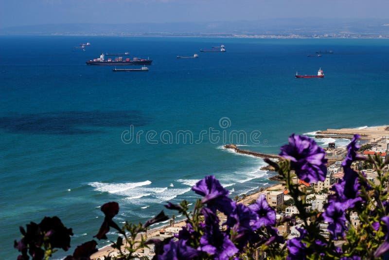 Όμορφη ήρεμη μπλε θάλασσα και πορφυρά λουλούδια στοκ εικόνες με δικαίωμα ελεύθερης χρήσης