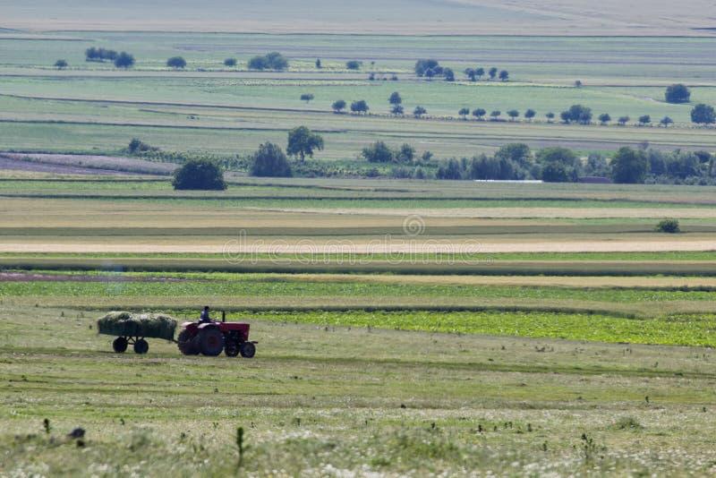 Όμορφη αγροτική σκηνή την άνοιξη με ένα όχημα που συλλέγει τη χορτονομή στοκ εικόνες