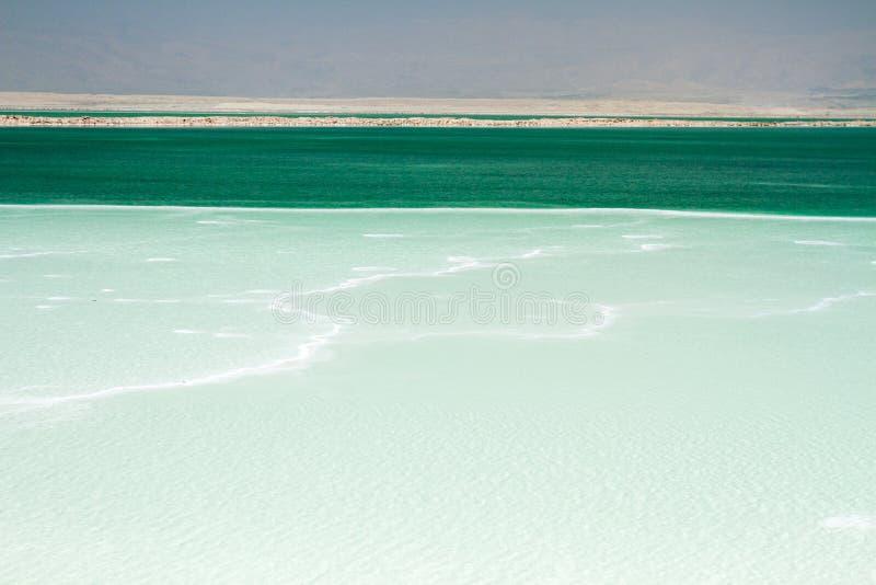 Όμορφη ακτή της νεκρής θάλασσας στοκ φωτογραφίες