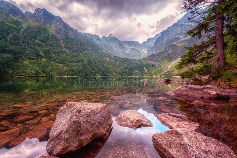 Όμορφη αλπική λίμνη στα βουνά, θερινό τοπίο, Morske Oko, βουνά Tatra, Πολωνία στοκ εικόνες με δικαίωμα ελεύθερης χρήσης
