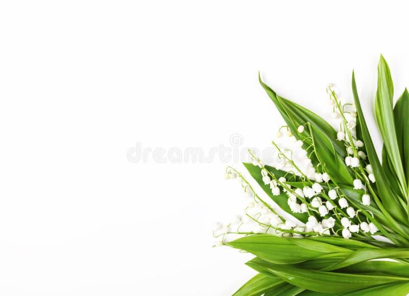 Όμορφη ανθοδέσμη των κρίνων της κοιλάδας που απομονώνεται στο άσπρο υπόβαθρο Τοπ όψη Επίπεδος βάλτε στοκ εικόνες